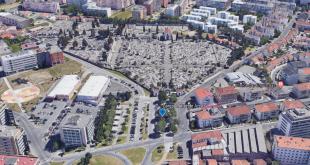 Autarquia de Braga vai intervir em árvores de risco