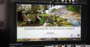 Comissão Municipal de Defesa da Floresta aprova Plano Operacional Municipal de Braga