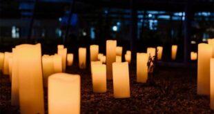 Museu dos Biscainhos vai ter concerto de música clássica à luz das velas