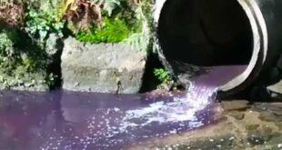 Rio Este em Braga sofre novas descargas ilegais