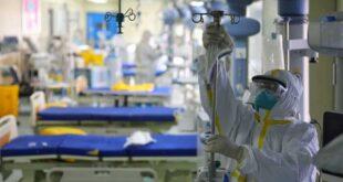 Covid-19: 16 mortos, 2.535 infetados e 1.340 recuperados em Portugal