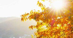 Sol regressa esta quarta-feira e traz subida das temperaturas para Braga