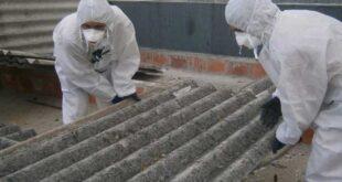Braga investe um milhão de euros para remoção de amianto nas escolas