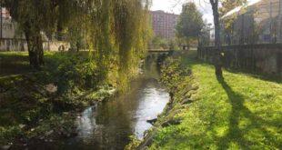Jardineiros limpam margens do rio Este em Braga