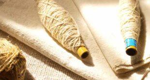 Investigação sobre o linho em Cabeceiras de Basto publicada na revista científica Portvgalia