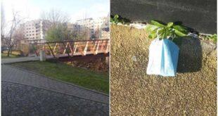 Cidadão contabiliza 132 máscaras usadas e abandonadas na ciclovia em Braga